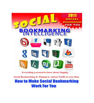 Social Bookmarking Intelligence