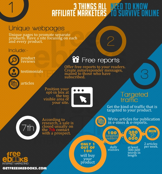 3 Things All Affiliate Marketers Need To Survive Online Infographics