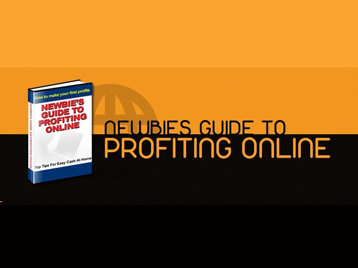 Newbies Guide To Profiting Online