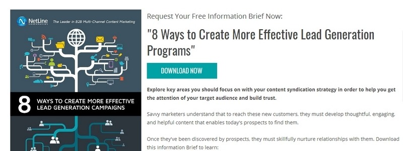 8 Ways to Create More Effective Lead Generation Programs by NetLine Corporation
