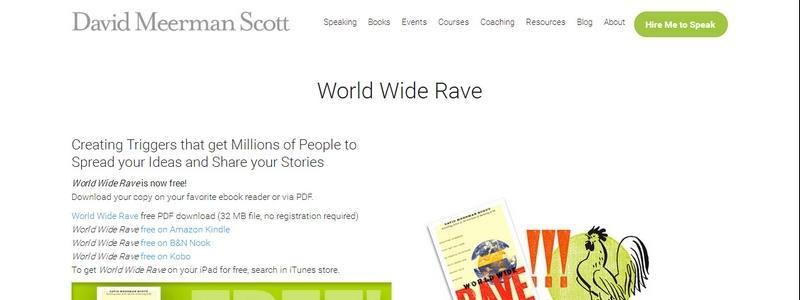 World Wide Rave by David Meerman Scott